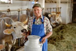 Dairy Farm Insurance
